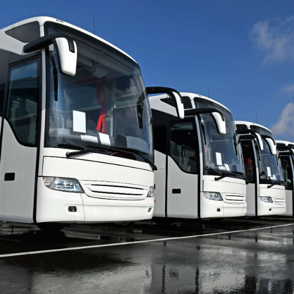 Row of white busses after rain or cleaning